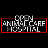 White Animal Care Hospital With Red Border Neon Sign
